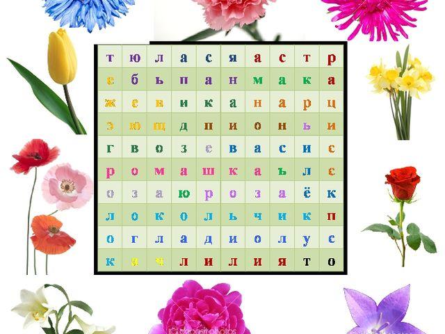 Найди названия цветов