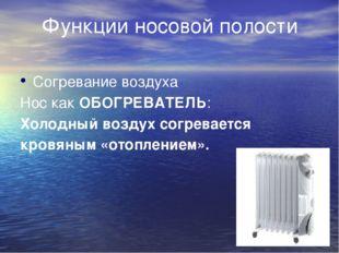 Функции носовой полости Согревание воздуха Нос как ОБОГРЕВАТЕЛЬ: Холодный