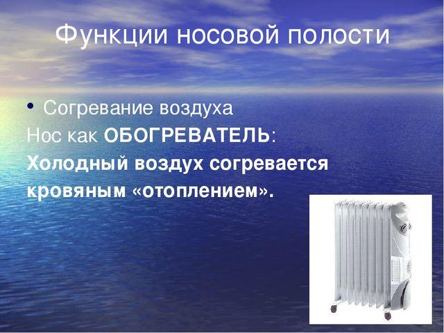 Функции носовой полости Согревание воздуха Нос как ОБОГРЕВАТЕЛЬ: Холодный...