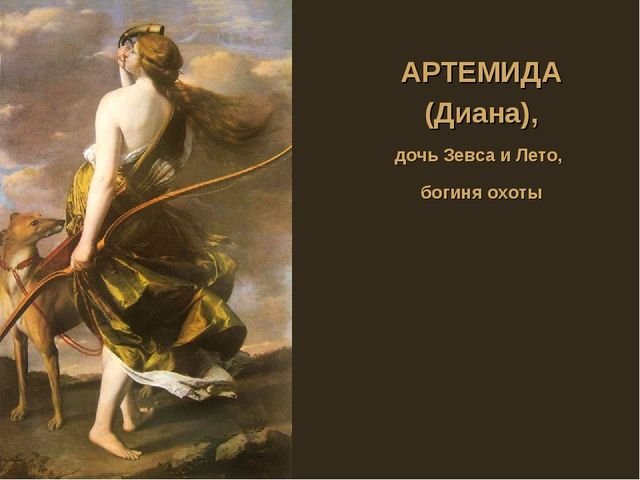 АРТЕМИДА (Диана), дочь Зевса и Лето, богиня охоты