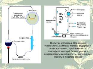 В опытах Миллера и Опарина из углекислоты, аммиака, метана, водорода и воды в