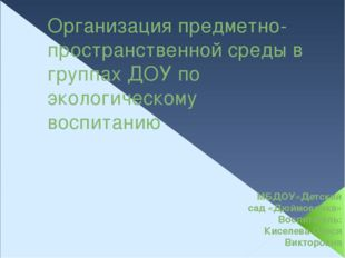 Организация предметно-пространственной среды в группах ДОУ по экологическому