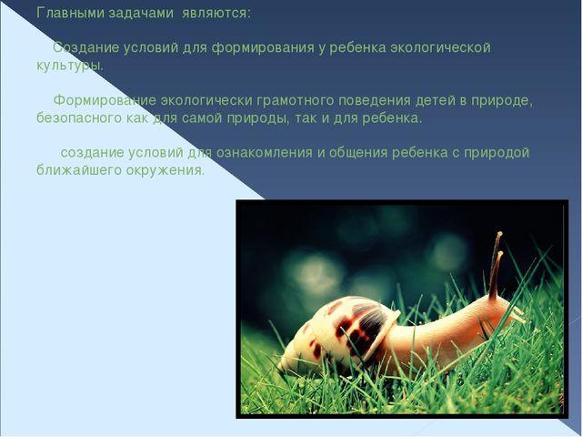 Главными задачами являются:  Создание условий для формирования у ребенка эко...