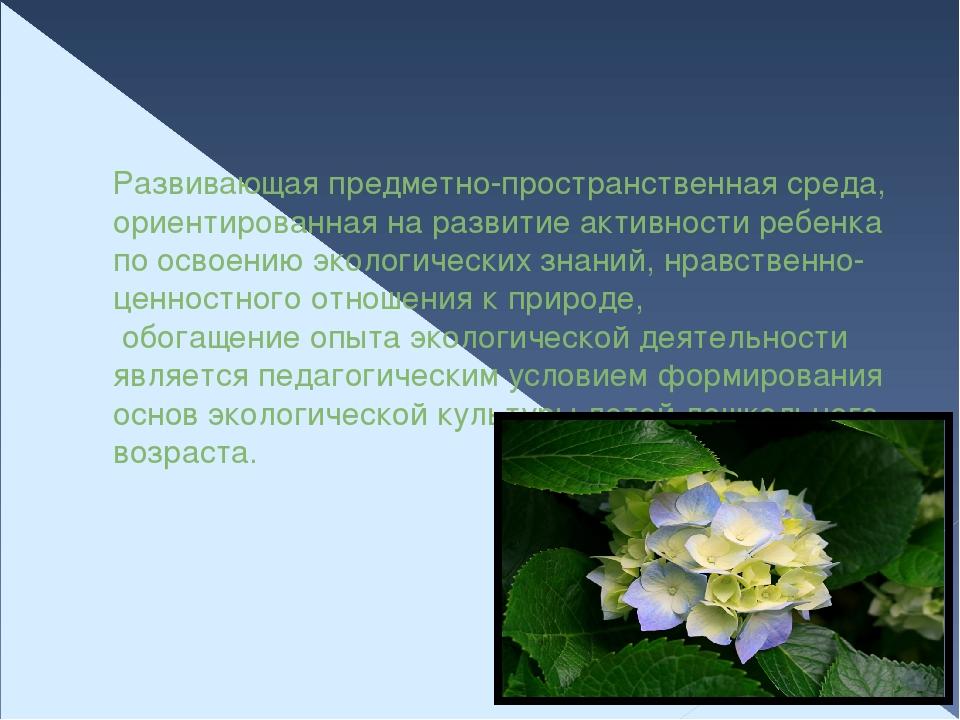 Развивающая предметно-пространственная среда, ориентированная на развитие акт...