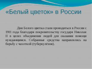 «Белый цветок» в России Дни Белого цветка стали проводиться в России с 1911 г