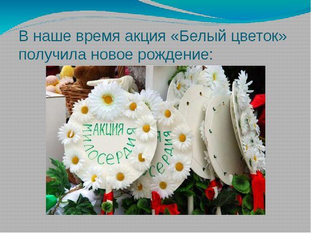 В наше время акция «Белый цветок» получила новое рождение: