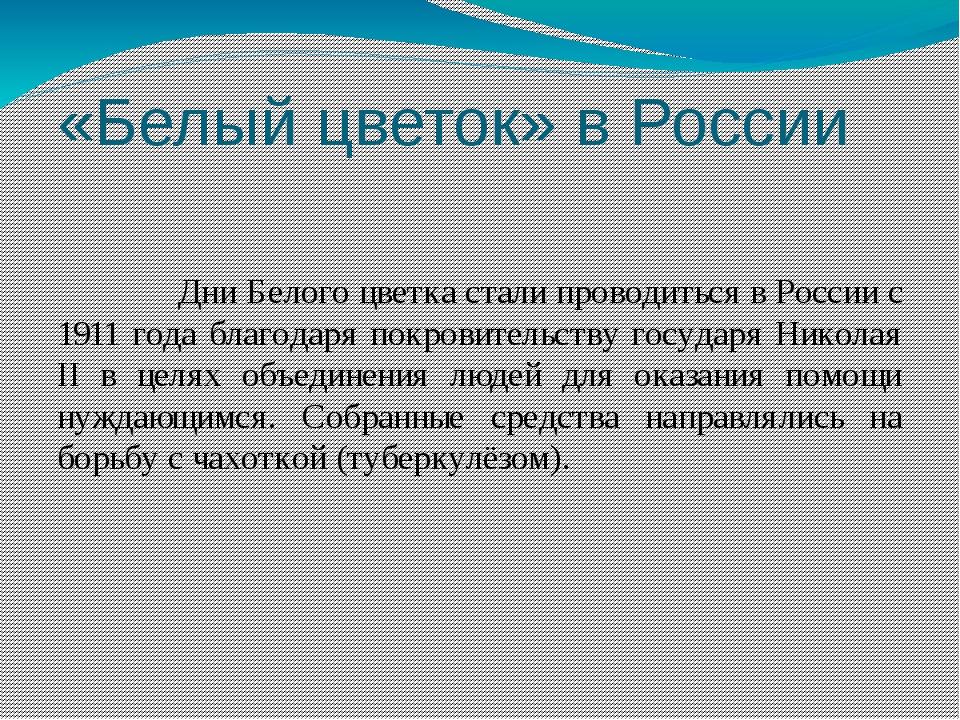 «Белый цветок» в России Дни Белого цветка стали проводиться в России с 1911 г...