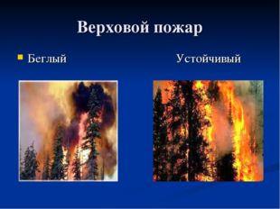 Верховой пожар Беглый Устойчивый