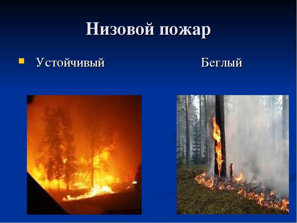 Низовой пожар Устойчивый Беглый