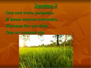 Загадка 2 Она под осень умирает, И вновь весною оживает, Коровам без нее беда