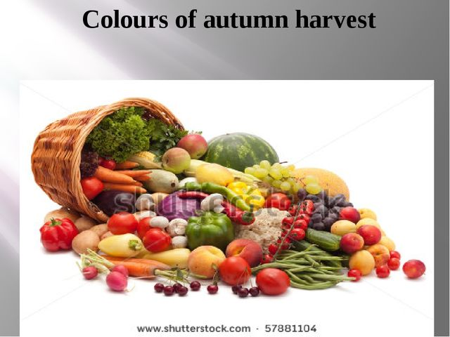 Colours of autumn harvest