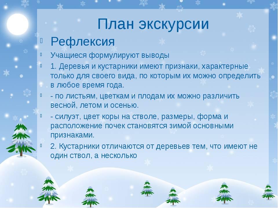 План экскурсии Рефлексия Учащиеся формулируют выводы 1. Деревья и кустарники...
