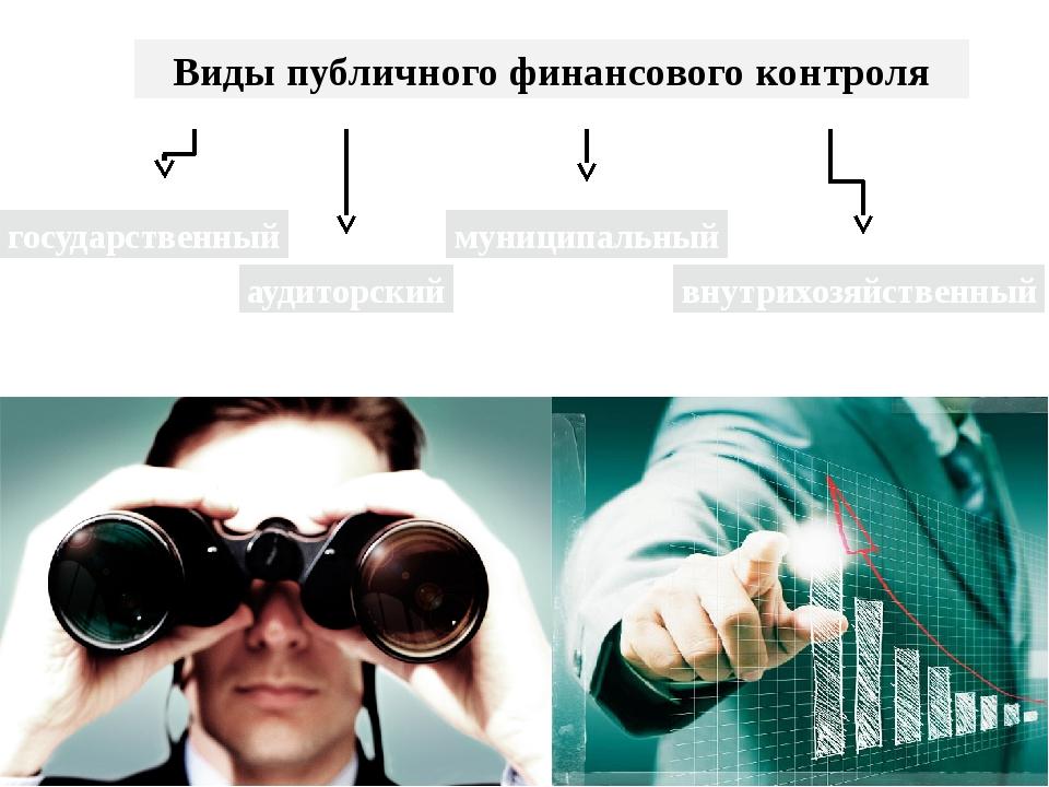 Виды публичного финансового контроля государственный муниципальный внутрихозя...