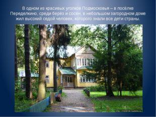 В одном из красивых уголков Подмосковья – в посёлке Переделкино, среди берёз