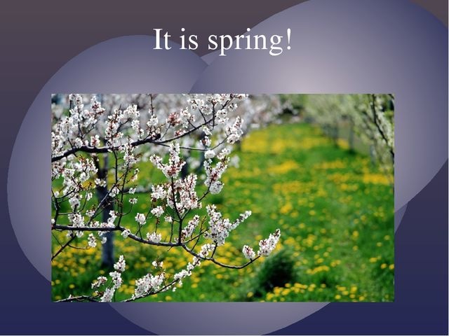 It is spring!