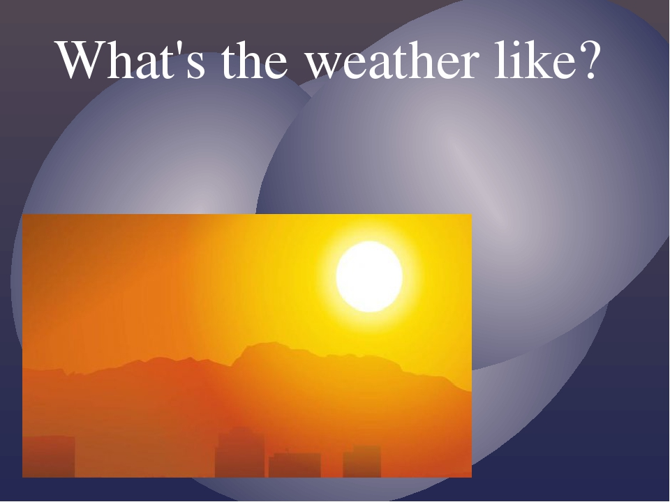 What's the weather like?