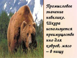В наших лесах сильнее зверя нет. Не зря про медведя уважительно говорят: «Хоз