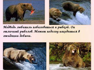 Разумеется, не все медведи стремятся к убийствам. Большинство из них предпочи