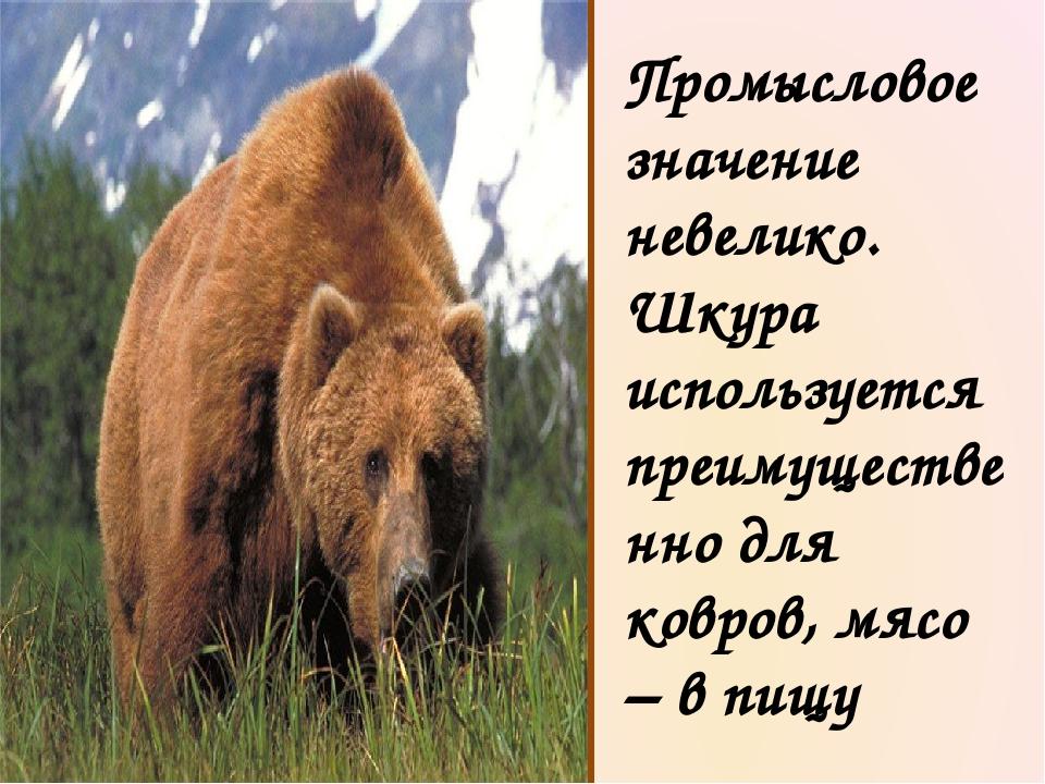 В наших лесах сильнее зверя нет. Не зря про медведя уважительно говорят: «Хоз...