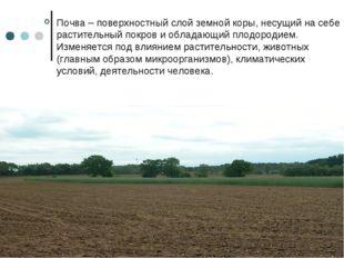 Почва – поверхностный слой земной коры, несущий на себе растительный покров и