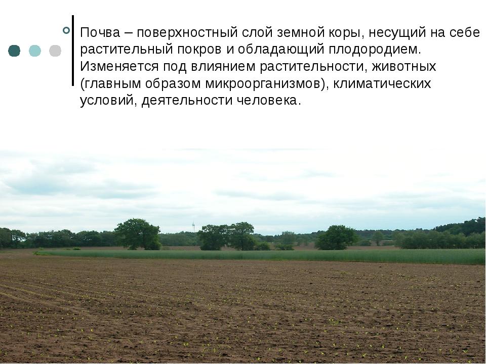 Почва – поверхностный слой земной коры, несущий на себе растительный покров и...