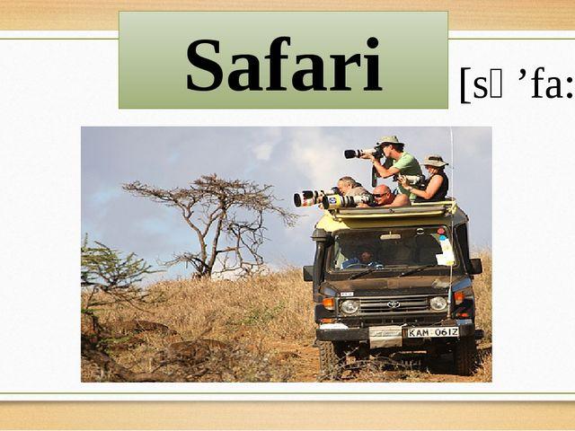 Safari [sə'fa:ri]