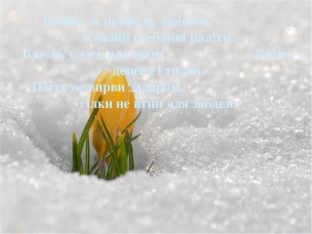 Вмійте ж природу любити, Кожній стеблині радіти. В полі, у лісі, над яром – К...