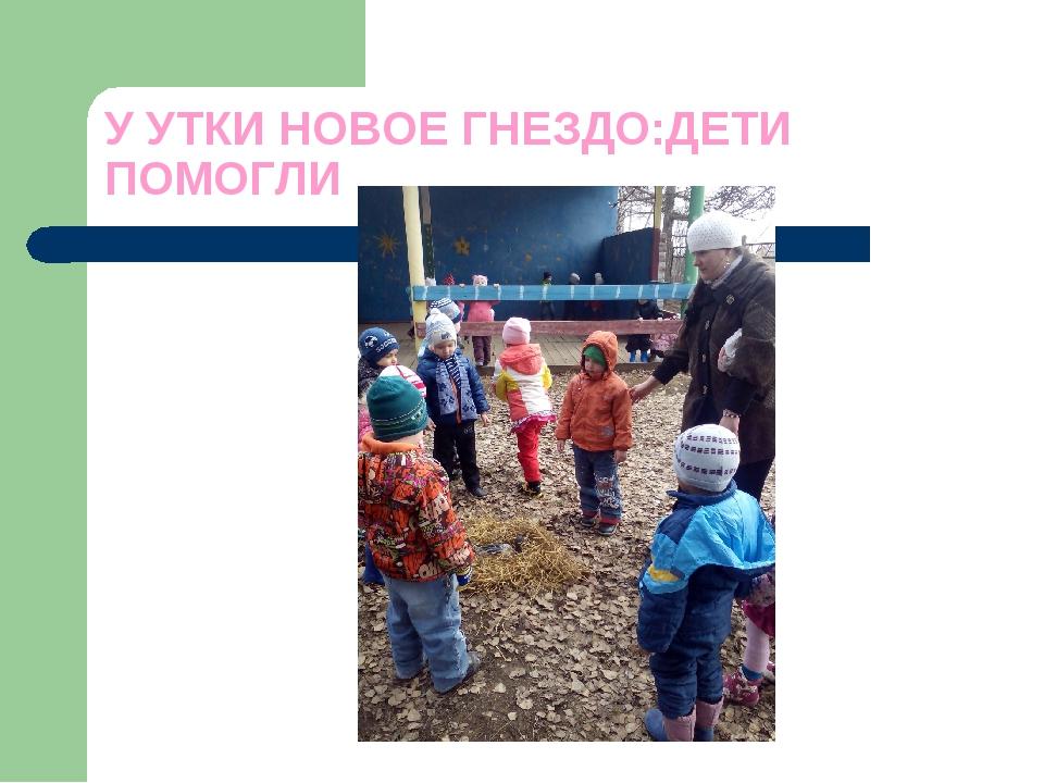 У УТКИ НОВОЕ ГНЕЗДО:ДЕТИ ПОМОГЛИ