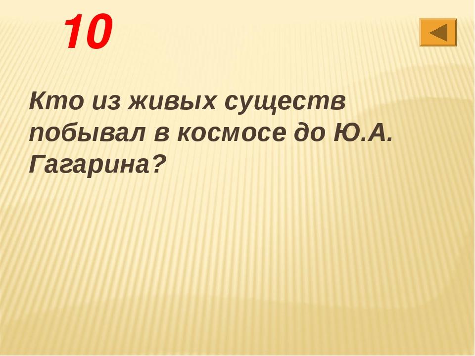 10 Кто из живых существ побывал в космосе до Ю.А. Гагарина?