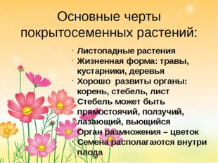 Основные черты покрытосеменных растений: Листопадные растения Жизненная форма