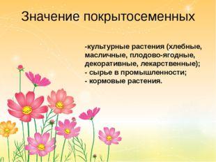 Значение покрытосеменных -культурные растения (хлебные, масличные, плодово-яг