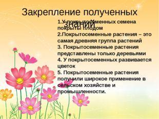 Закрепление полученных знаний 1.У покрытосеменных семена покрыты плодом 2.Пок