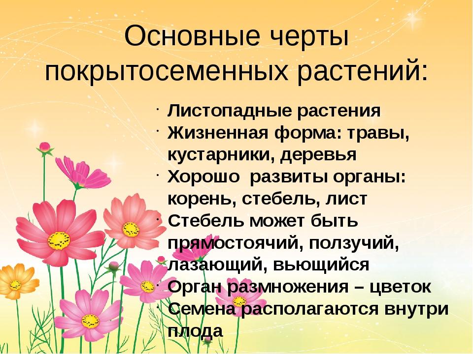 Основные черты покрытосеменных растений: Листопадные растения Жизненная форма...