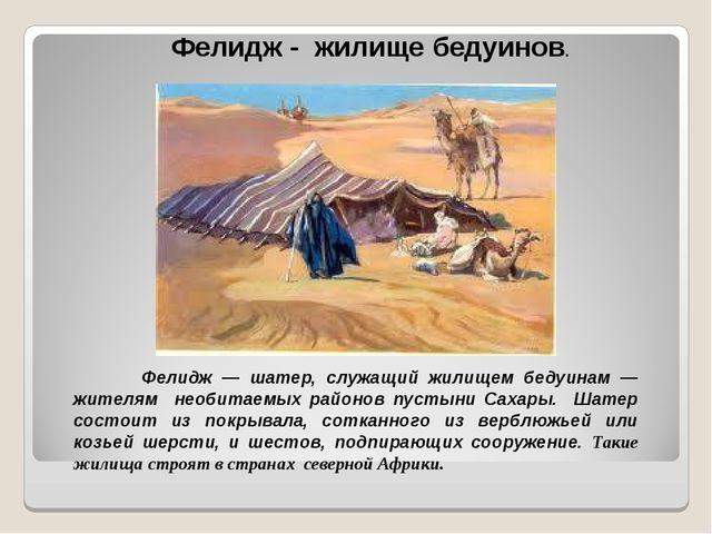 Фелидж - жилище бедуинов. Фелидж — шатер, служащий жилищем бедуинам — жителям...