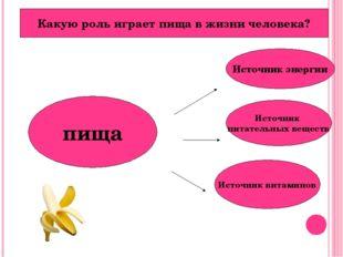 пища Источник энергии Источник питательных веществ Источник витаминов Какую р