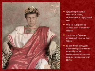 Царской роскошью считались ткани, окрашенные в пурпурный цвет. Они не выгорал