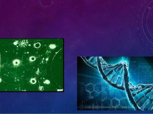 Биологическое воздействие радиации - это изменения, вызываемые в жизнедеятел