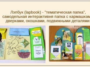 """Лэпбук (lapbook) - """"тематическая папка"""", самодельная интерактивня папка с ка"""