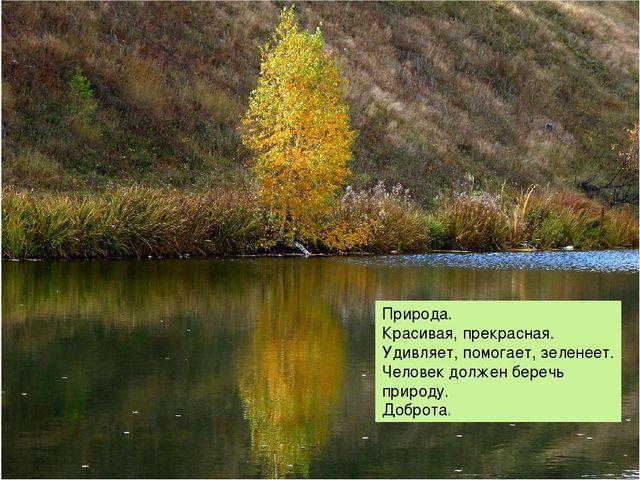 Природа. Красивая, прекрасная. Удивляет, помогает, зеленеет. Человек должен...