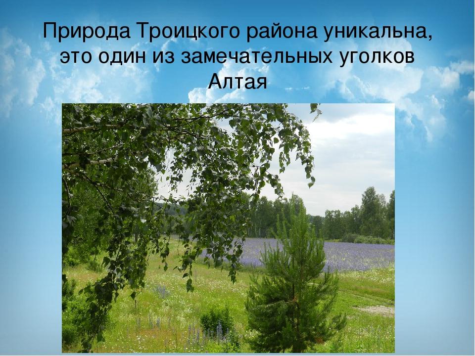 Природа Троицкого района уникальна, это один из замечательных уголков Алтая