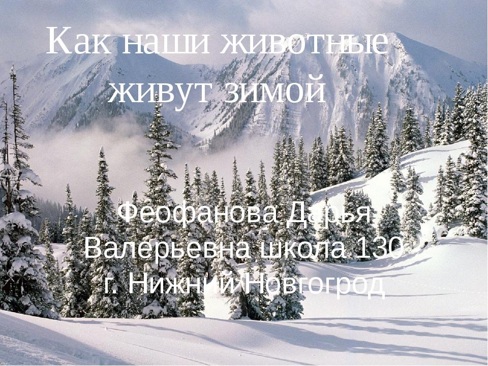 Как наши животные живут зимой Феофанова Дарья Валерьевна школа 130 г. Нижний...