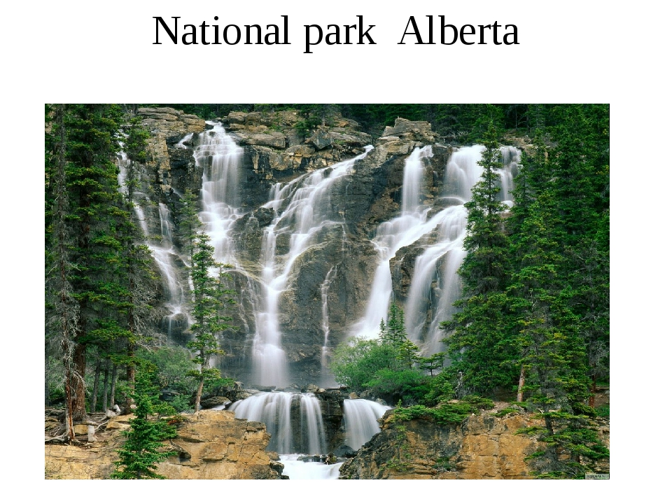 National park Alberta