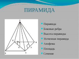 ПИРАМИДА Пирамида Боковые ребра Высота пирамиды Усеченная пирамида Апофема Пл