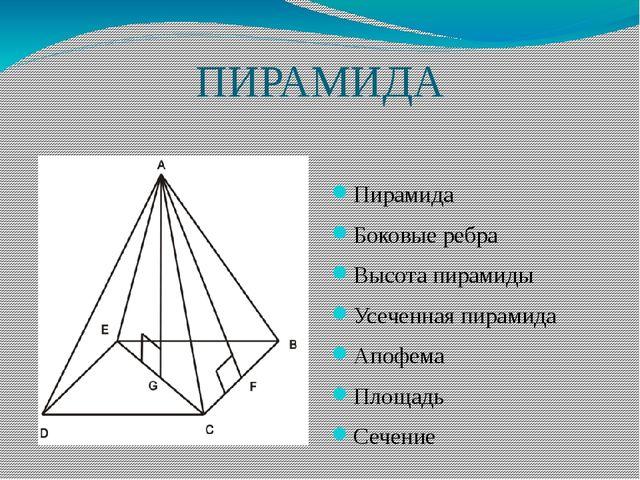 ПИРАМИДА Пирамида Боковые ребра Высота пирамиды Усеченная пирамида Апофема Пл...