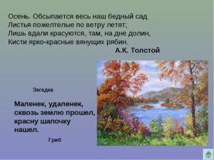 Осень. Обсыпается весь наш бедный сад Листья пожелтелые пo ветру летят; Лишь