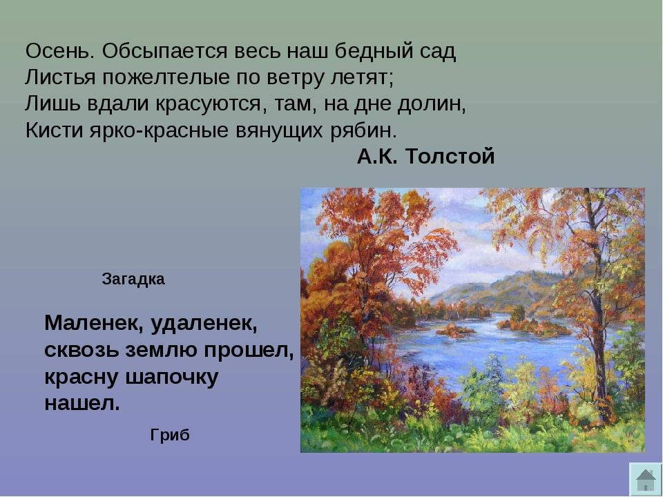 Осень. Обсыпается весь наш бедный сад Листья пожелтелые пo ветру летят; Лишь...