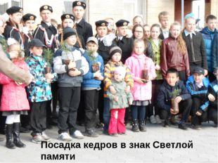 Посадка кедров в знак Светлой памяти Героев Свирской битвы