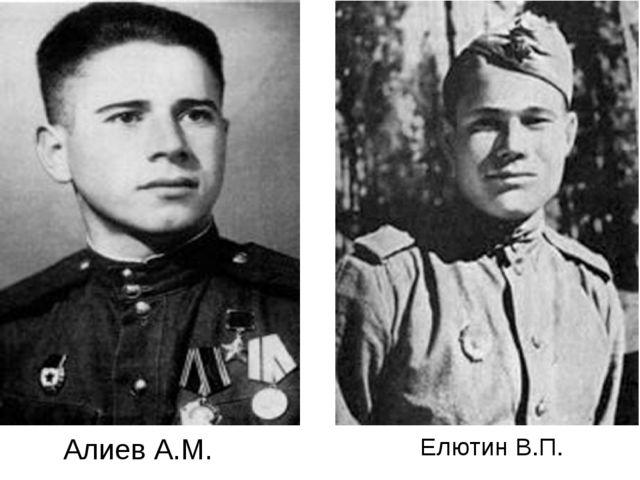 Елютин В.П. Алиев А.М.
