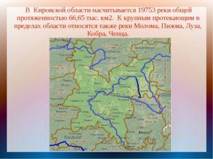 В Кировской области насчитывается 19753 реки общей протяженностью 66,65 тыс.