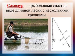 Самодур — рыболовная снасть в виде длинной лески с несколькими крючками.
